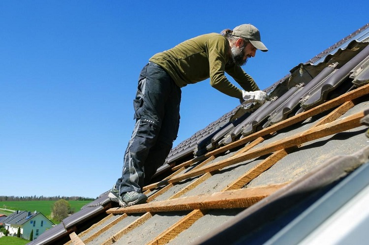 Roofing Services from Local Companies